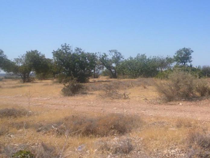 Недвижимость на Продажу: Земля (Жилая Застройка), Пейа, Пафос | Key Realtor Кипр